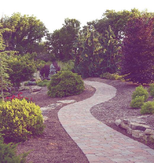 Photo of a path that leads through Frisella Nursery