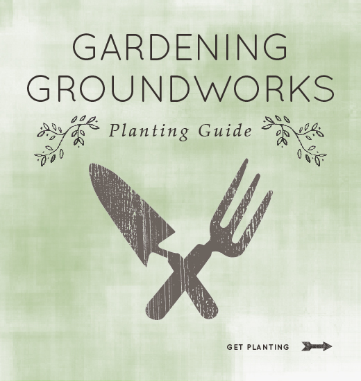 Illustration of a shovel and pitchfork with the text Gardening Groundworks: Planting Guide