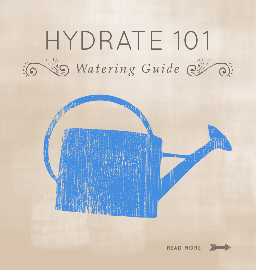 Illustration of a watering can with the text Hydrate 101: Watering Guide