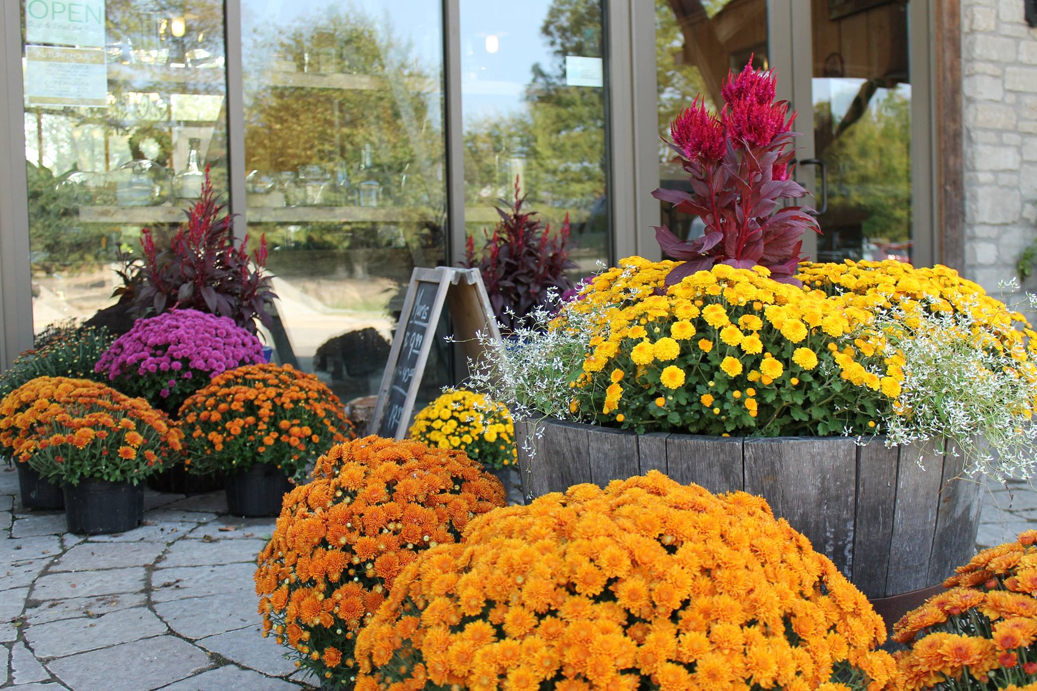 How to create a beautiful fall planter
