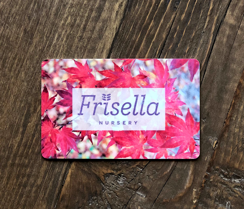 Photo of a Frisella Nursery gift card on a wood table