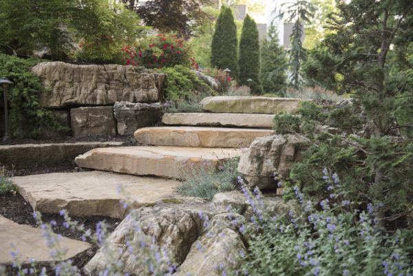 St. Louis Landscaping Sunset Hills waterfall, Southern Magnolia, Hydrangea
