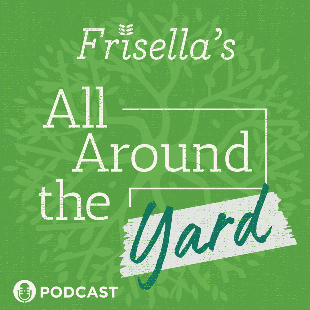Frisella Nursery podcast banner