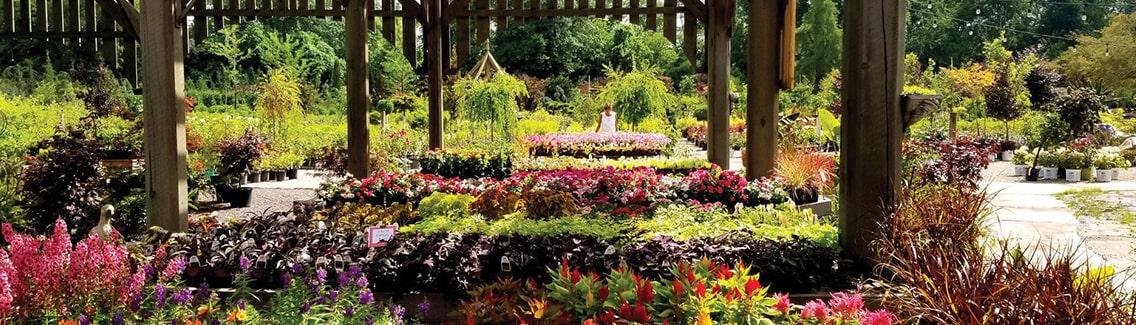 Frisella Nursery's garden center