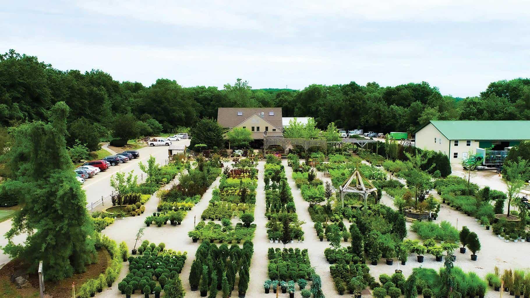 Aerial view of Frisella Nursery