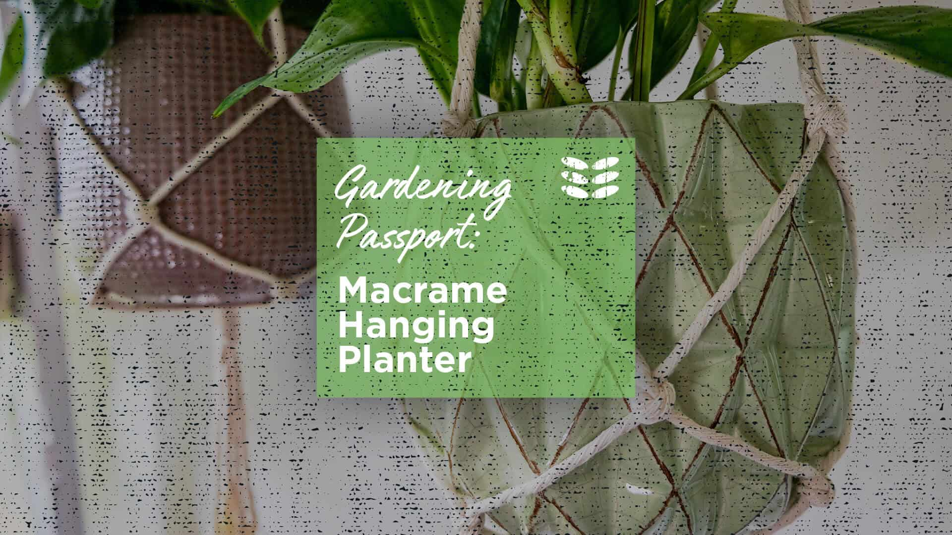 Macrame Hanging Planter Oct 24th
