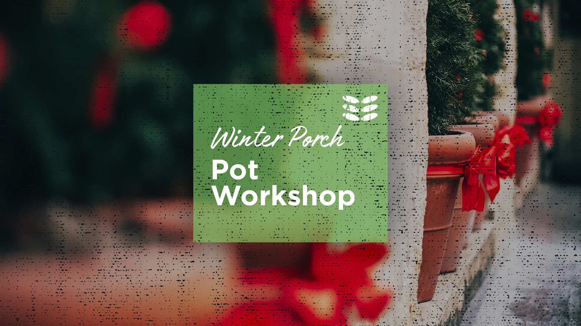 Winter Porch Pot Workshop